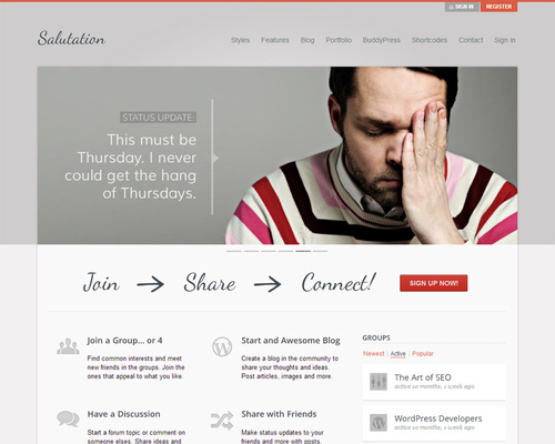 WordPress and BuddyPress Theme