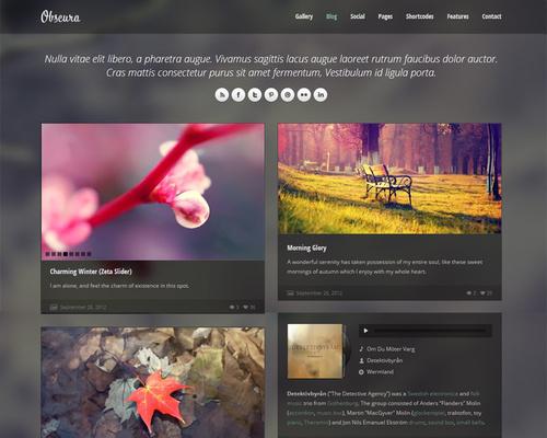 WordPress Tumblr Theme