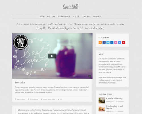 Wordpress Blog & Social Pages