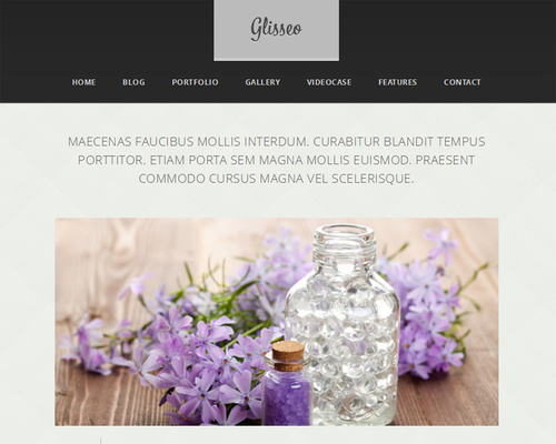 WordPress Theme with Image Slider
