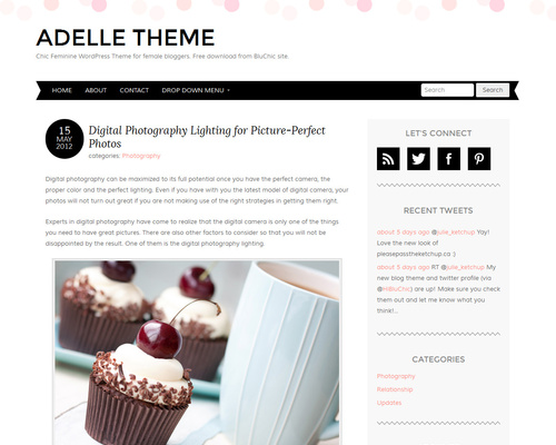 Adelle Theme - Free Personal Blog WordPress Theme | Themeshaker.com