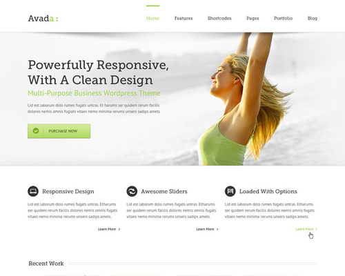 Highly Customizable WordPress Theme