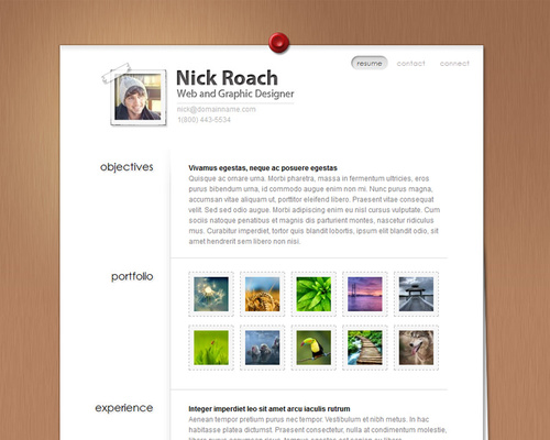 WordPress Resume Theme