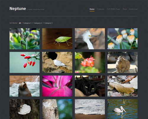 Free WordPress Gallery Theme