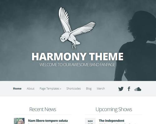 WordPress Theme for Musician