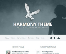 WordPress Theme for Musician