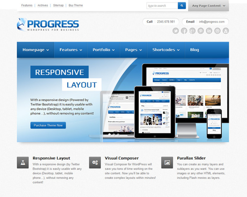 WordPress Pro Theme