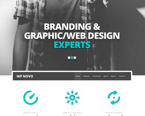 Novo - One Page Portfolio WordPress Theme   Themeshaker.com