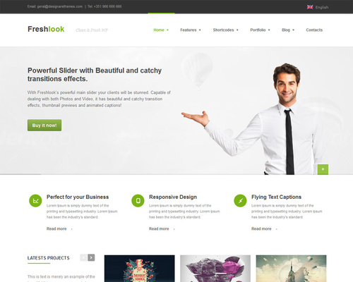 Premium Theme for WordPress