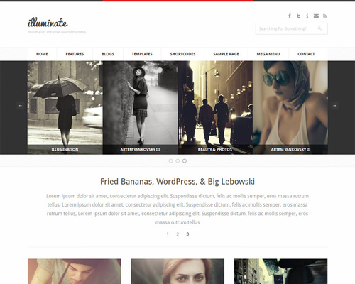 Neat WordPress Theme