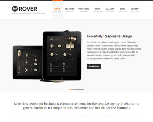 Portfolio & Ecommerce WordPress Theme