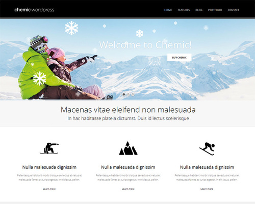 WordPress Winter Theme