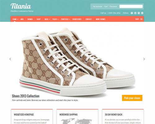 WordPress Theme for Online Store