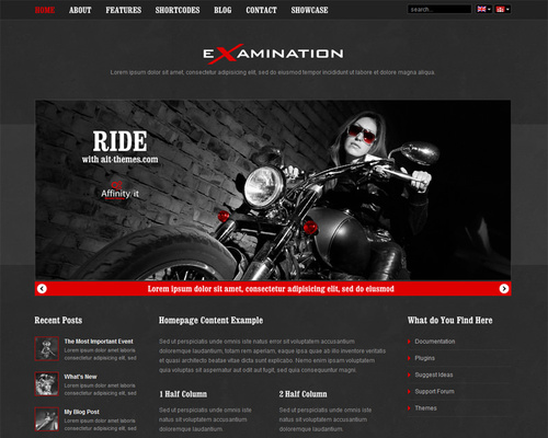 Extreme Business WordPress Theme