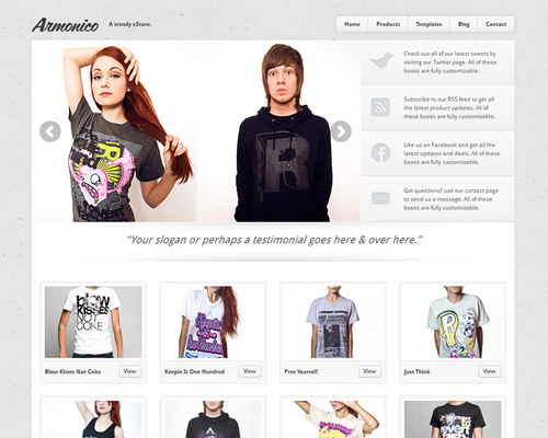 WordPress Store Template