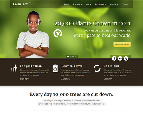 WorPress Theme for Non-Profit Organizations