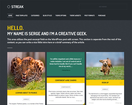 Micro Magazine WordPress Theme