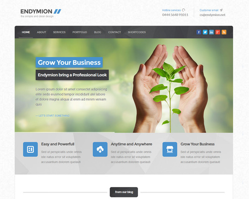 Clean WordPress Business Theme