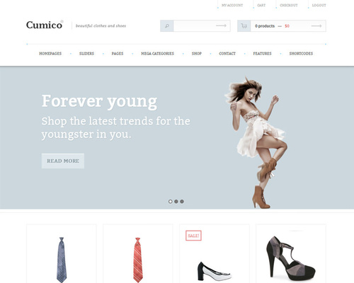WordPress Clothing Store Theme