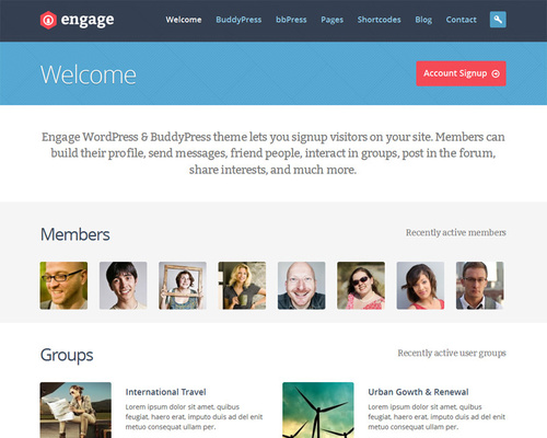 BuddyPress WordPress Theme