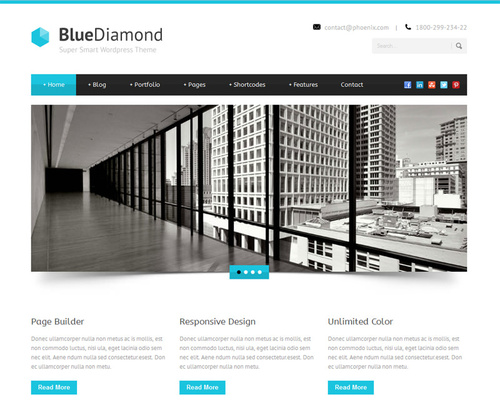 Professional WordPress Template