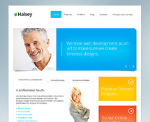 Responsive Theme for Business