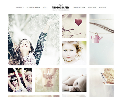 WordPress Photo Gallery Template