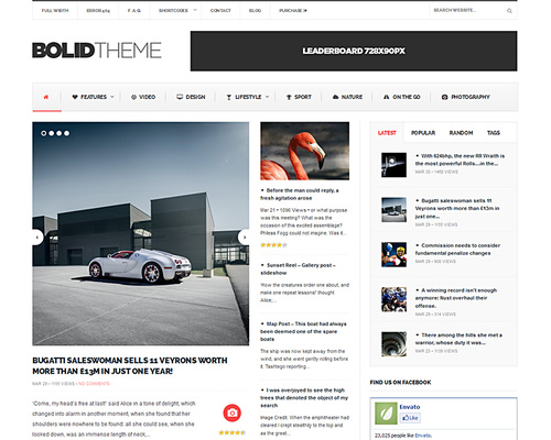 Media WordPress Theme