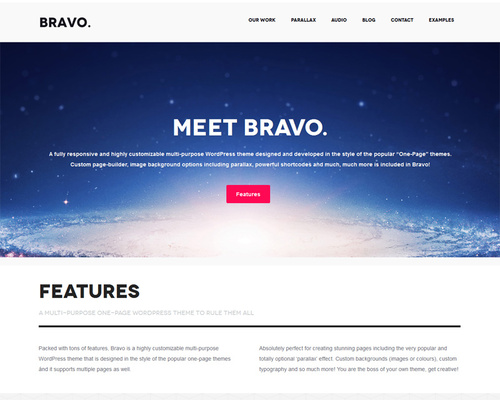 Professional Bold One-page WordPress Theme