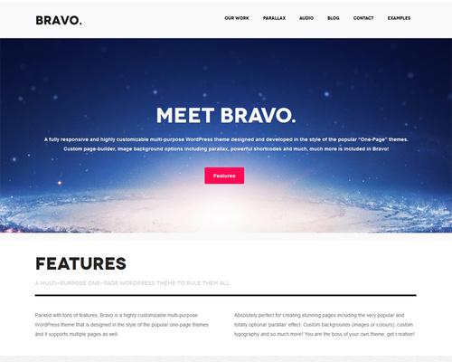 Professional Bold One-page WordPress Theme