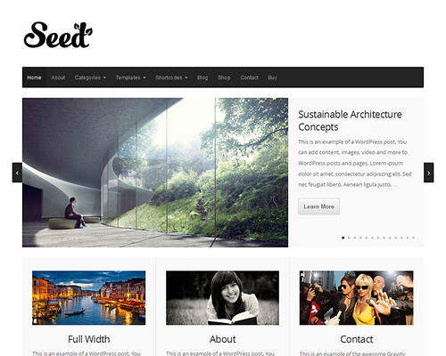 Simple yet Functional WordPress Theme
