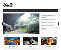Simple yet Functional WordPress Theme