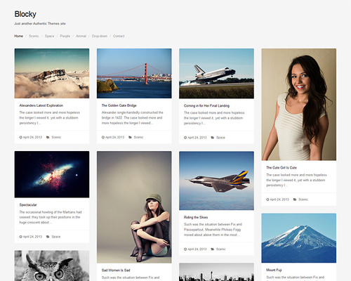 Blocky - Simple Grid-based WordPress Theme | Themeshaker.com