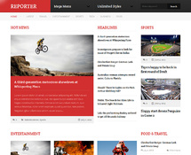 Professional News WordPress Theme