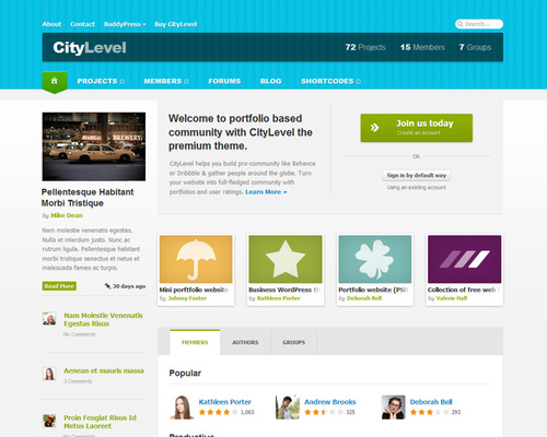 BuddyPress & Portfolio Based Community Theme