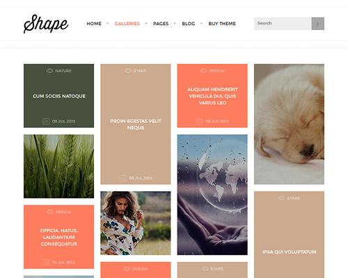 Gallery Theme for WordPress