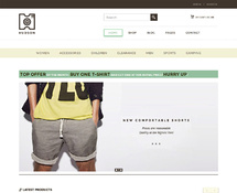 Online Store Theme for WordPress