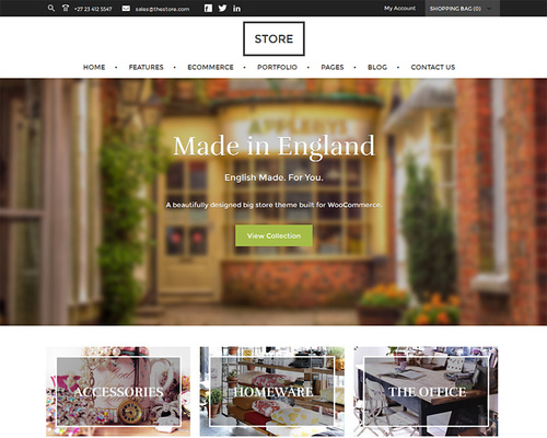 WordPress Theme for Store