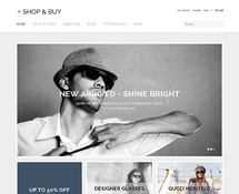 WordPress Shop Template