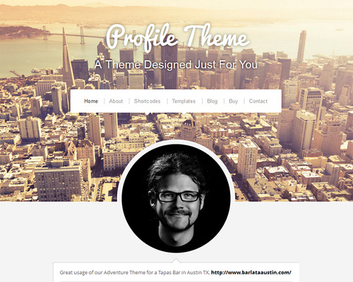 Personal Profile & Portfolio WordPress Theme