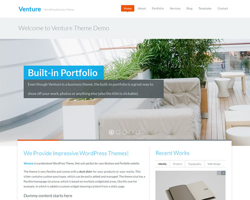 Pro WordPress Theme