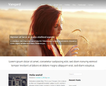 Free WordPress Theme with Big Image Slider