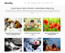 Free Grid Blog or Portfolio WordPress Theme