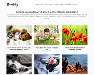 Wembley-free-grid-blog-or-portfolio-wordpress-theme