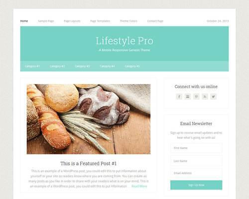 Simple Lifestyle Magazine WordPress Theme