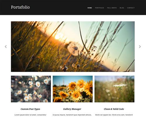 Free Professional WordPress Portfolio Theme
