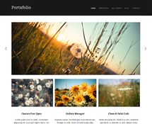 Free Professional WordPress Portfolio Theme