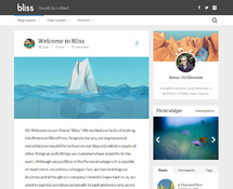 WordPress Blog Template