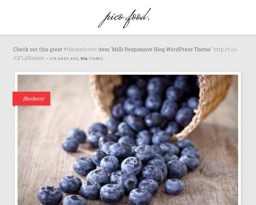 Food & Lifestyle WordPress Blog Theme