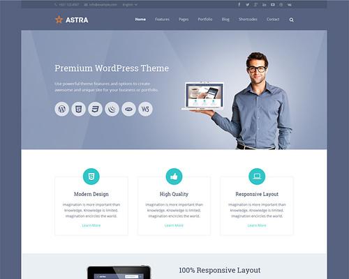 Professional and Flexible WordPress Theme